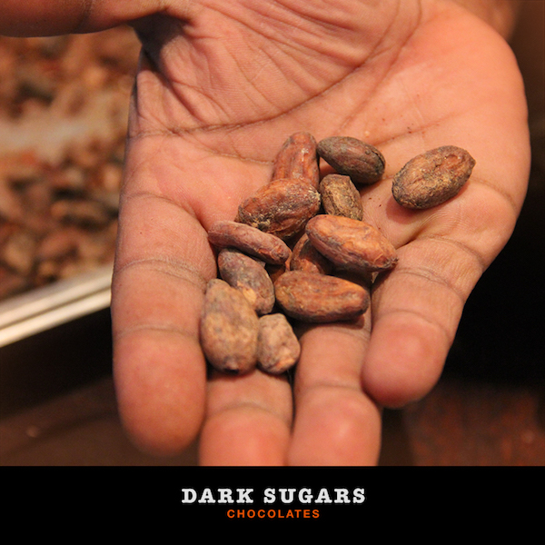 Fèves de cacao- Dark Sugar©