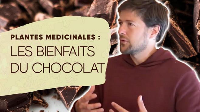 Interview avec Loïc Plission à propos du sommet des plantes médicinales©ChocoClic.com