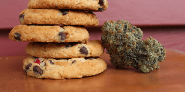 chocolat au goût de cannabis