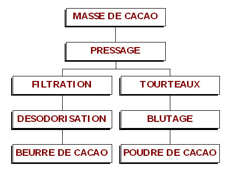 La fabrication du cacao en Poudre