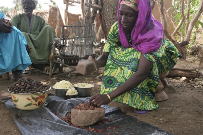 Fabrication du beurre de Karité©