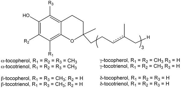La formule de la vitamine E©