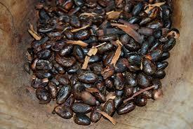 Féves de cacao grillées©