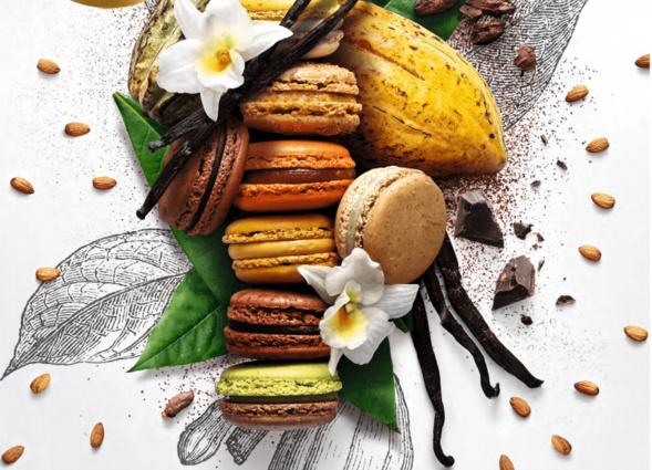 Le jour du Macaron dédié aux enfants de Madagascar