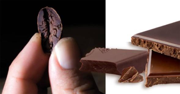 gout du chocolat sur la base de mesures tribologiques