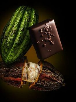 Chocolat Es Koyama