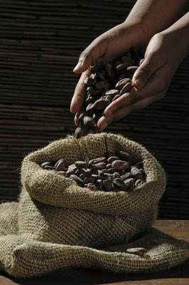 La Révolution du Cacao - Singapour