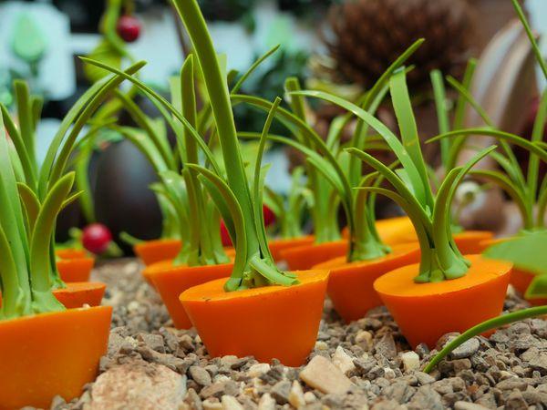 Les carottes en chocolat par Edible Bloom©