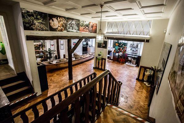 Le premier étage du musée ChocoStory de Bruxelles©