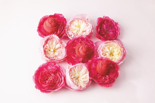 Les roses de Lenôtre©