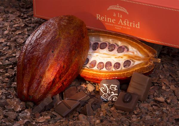 Chocolats de A la Reine Astrid©