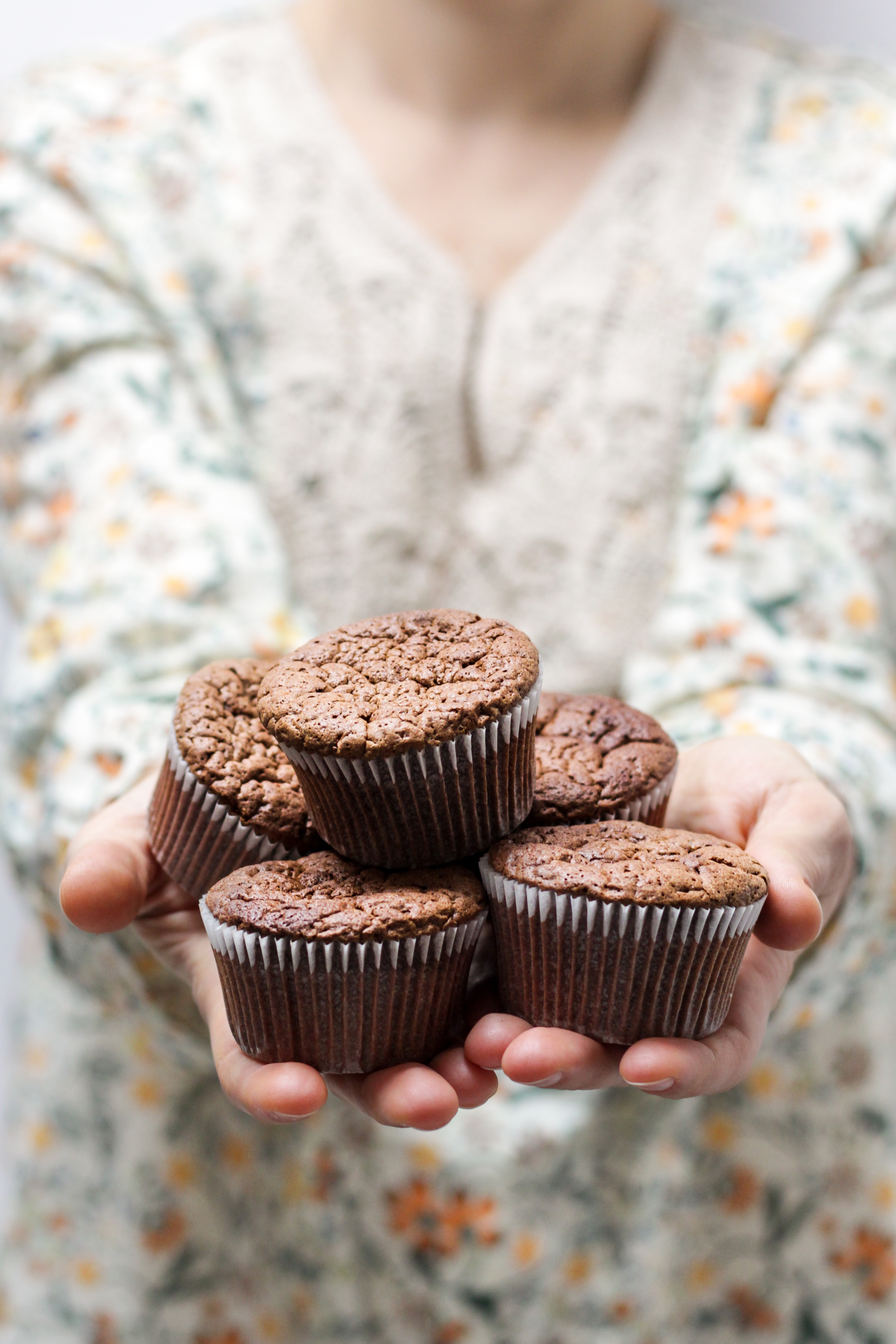 Cupcakes au chocolat© NordWood Themes
