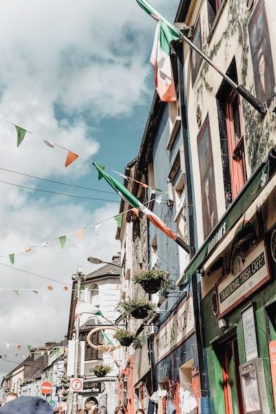 Rue en Irelande Tamara-Gurtler