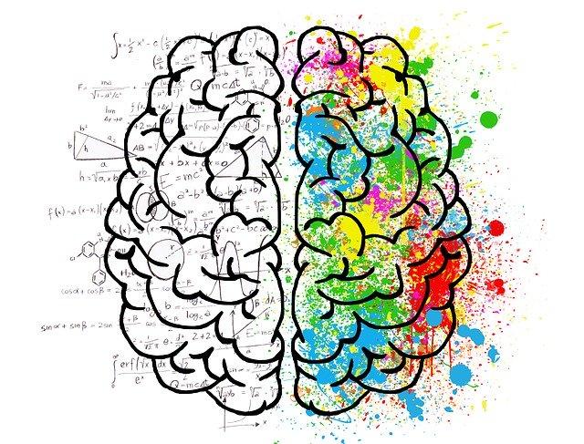 """Le chocolat peut augmenter la puissance de votre cerveau """"Les Preuves Scientifiques"""""""