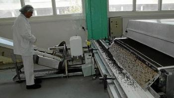 "Fabrication ""Chocolaterie de Provence"""