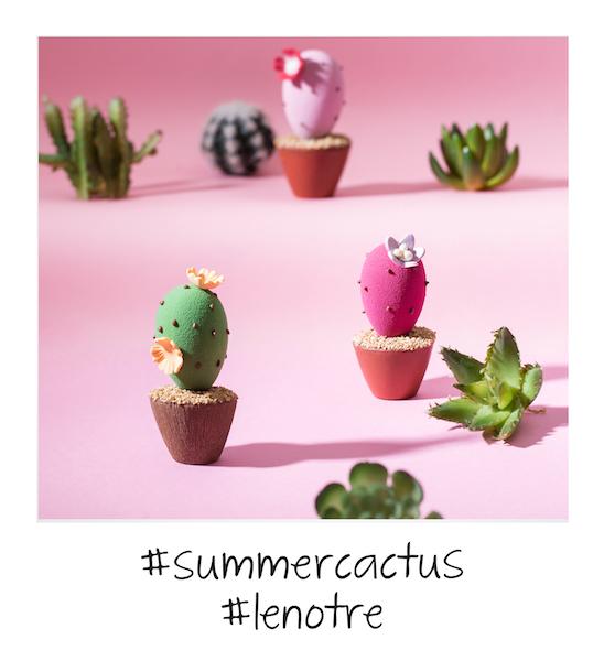 Pola Cactus par Lenôtre©