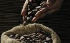 Mendoa, les saveurs du Brésil