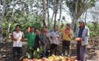 Les employé au Pérou©