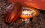 A La Reine Astrid : un hommage en chocolat à une reine adulée…