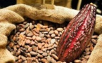 Mars lance le Cocoa Exchange