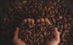 Quel pays exporte le plus de chocolat ?