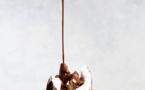 Crême glacée au chocolat©Brenda Godinez