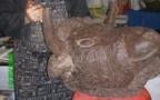 Un taureau choco dans la masse de Didier MIVIERE