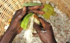 World Cocoa Foundation