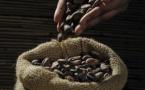 Le cacao ivoirien : une source  d'inspiration