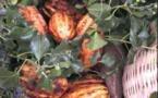 La première chocolaterie de Côte-d'Ivoire