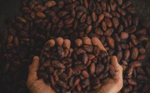 Confédération des Chocolatiers : acteur du progrès social de la filière cacao.