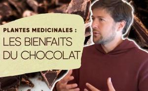 Interview avec Loïc Plisson à propos du sommet des plantes médicinales (chocolat)