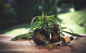 Des graines de cannabis et chocolat : NUTRITION ET SANTE