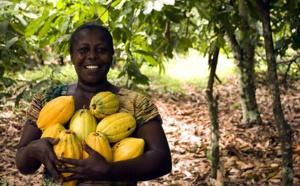 Lutter contre les plantations de cacao illégales en Côte d'Ivoire