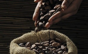Quel sera le marché de Cacao et du Chocolat en 2026 ?