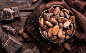 Cocoa VS Cacao : une différence fondamentale dans certains territoires du globe