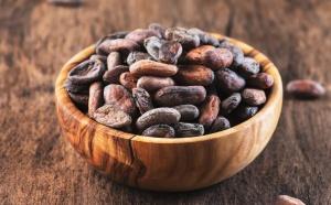 Les confiseurs allemands ont appelé le nouveau LID à aider les agriculteurs de cacao