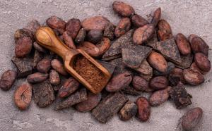 South Pacific Cacao, l'un des rares magasins de chocolat de la fève à la barre à Sydney