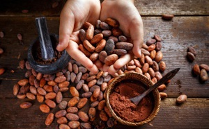 Le chocolatier belge Godiva rejoint la Fondation Earthworm