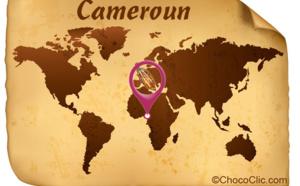 La provenance des fèves de cacao du Cameroun