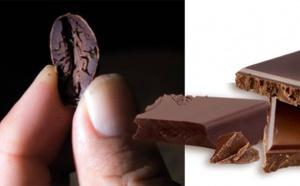 Évaluation du goût sucré du chocolat sur la base de mesures tribologiques
