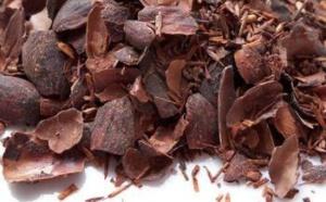 Le chocolat retrouve sa place dans la ville de York