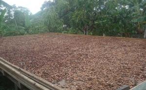 Chocolat Stella Bernrain : une entreprise durable et de qualité