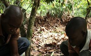 La Fondation Cocoa Horizons par Barry Callebaut…