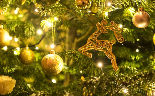 Dégustez Noël avec Montezuma's