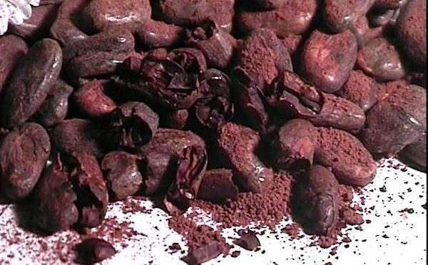 Qu'est ce que la teneur en cacao dans le chocolat?