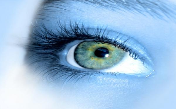 Les stimulations visuelles