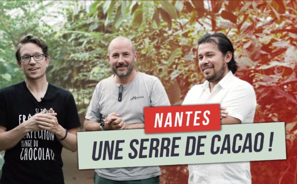 Une serre de cacao à Nantes!