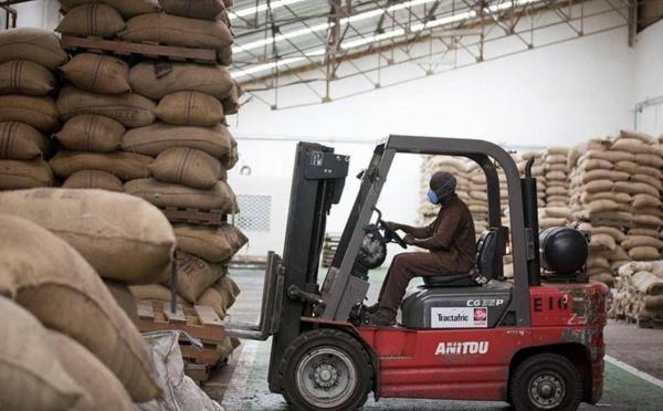 Protection renforcée chez Barry Callebaut pour ses Cocoa Farmers