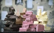 Barry Callebaut : un partenariat vital et du délice à partager.